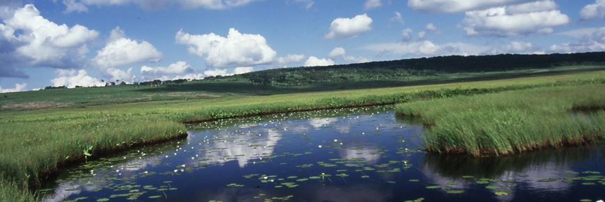 石狩川流域 湿地・水辺・海岸ネットワーク